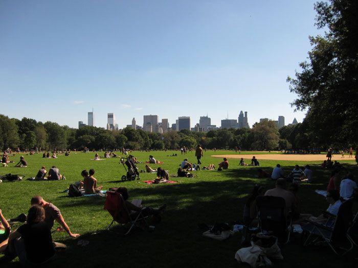 Nova York: depois do vendaval