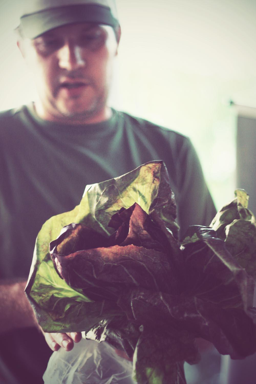 Agrotóxico: a culpa é do capim
