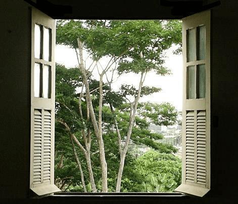Essa janela aberta sobre maio