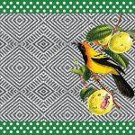 pássaro brasileiro e frutas
