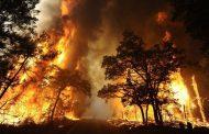 Portugal em chamas