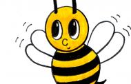 Que venham as abelhas
