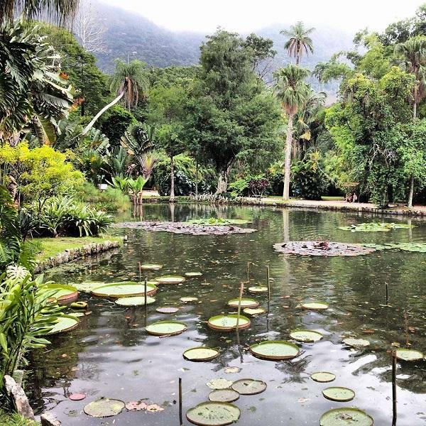 Setembro é o mês ideal para visitar o Jardim Botânico, no Rio de Janeiro, quando o verde fica mais verde e flores desabrocham