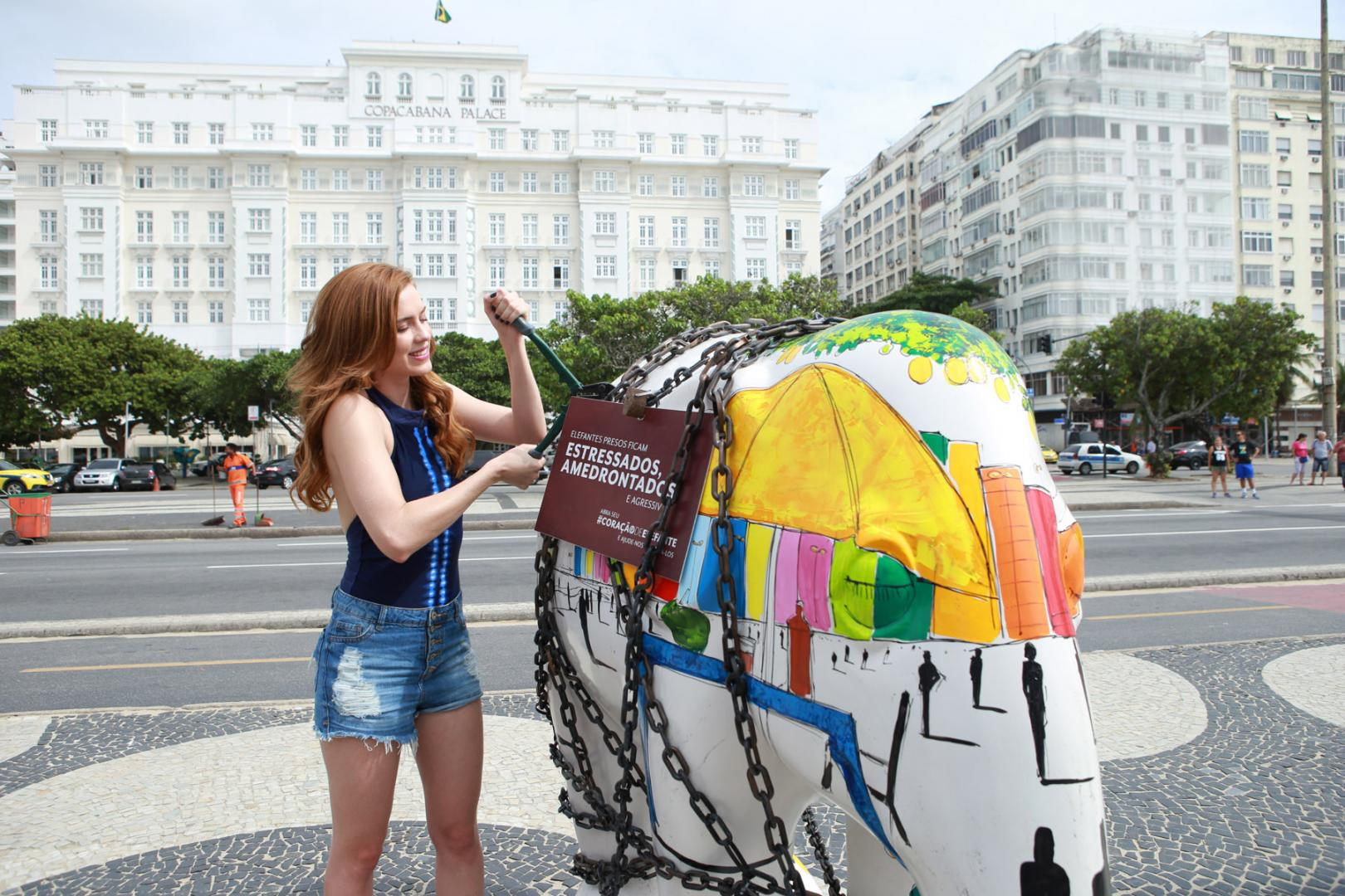 SophiaAbrahão liberta elefante acorrentado no Rio, alertando preservação da espécie