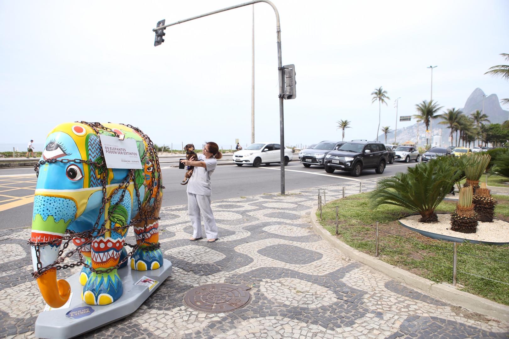 Elefantes são acorrentados no Rio para chamar a atenção para maus tratos