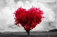 Falando de amor