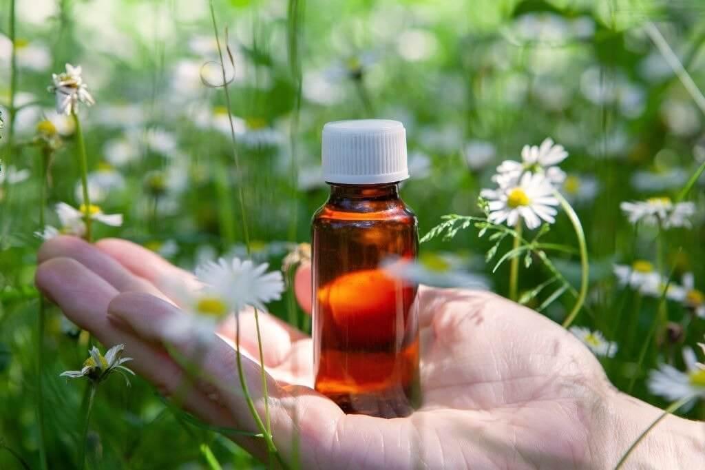 Florais e aromaterapia auxiliam no tratamento da Síndrome do Esgotamento Social