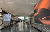 Comunidade de Paraisópolis ganha exposição internacional de fotos