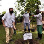 Eduardo Paes plantando Babosa-Branca