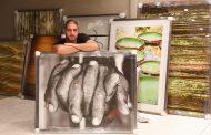 Fotógrafo Ari Kaye inaugura exposição individual no CasaShopping