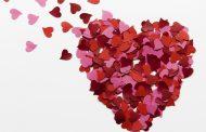 O coração, a razão e a pessoa