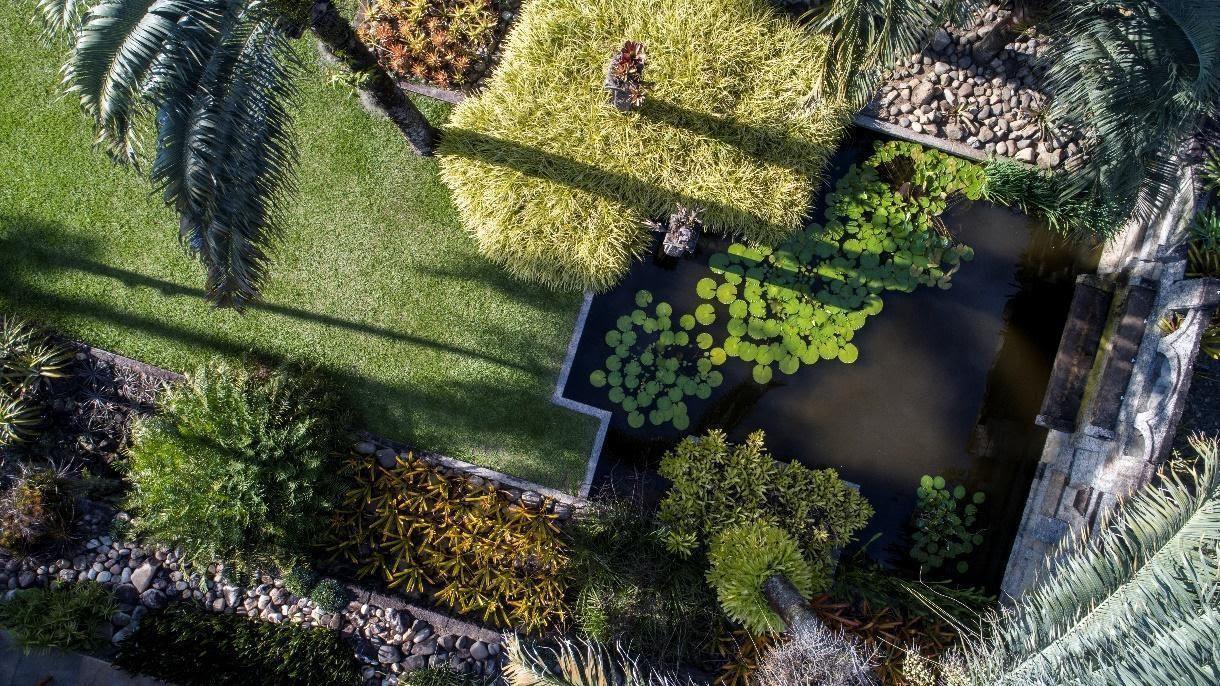 Sítio Roberto Burle Marx pode se tornar Patrimônio Mundial da Unesco