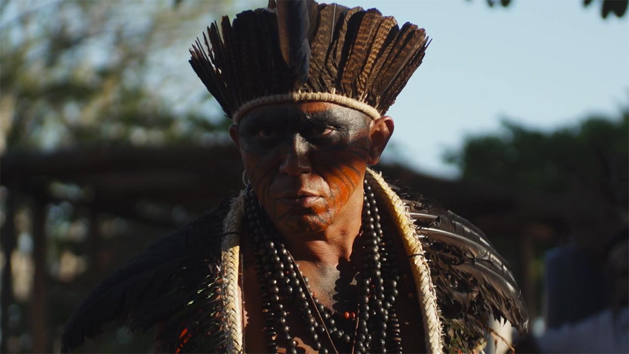 Filme que destaca meio ambiente brasileiro é premiado na 10ª Mostra Ecofalante de Cinema